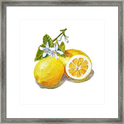 Two Happy Lemons Framed Print by Irina Sztukowski