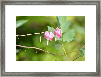 Two Hearts One Soul Framed Print