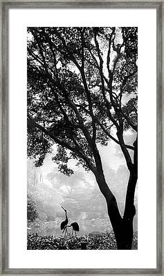 Two Heron - Black And White Framed Print by Lori Grimmett