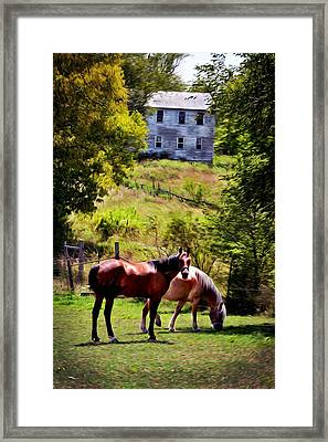 Two Horse Amish Town Framed Print by Brenda Harrah
