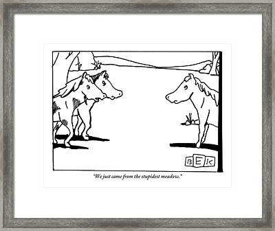 Two Horses Approach Another In A Meadow Framed Print by Bruce Eric Kaplan