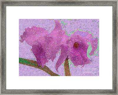 Two Hothouse Beauties Framed Print by Barbie Corbett-Newmin