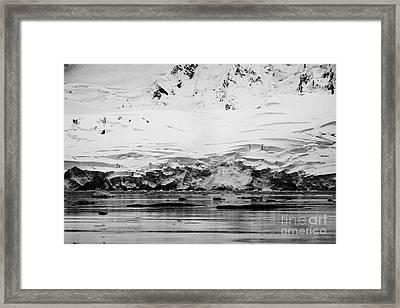 two humpback whales megaptera novaeangliae logging or sleeping in Fournier Bay Antarctica Framed Print by Joe Fox