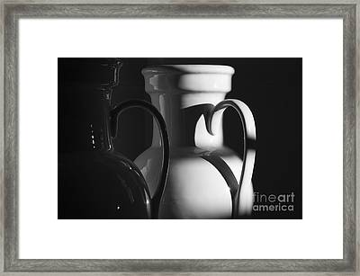 Two In Black And White Framed Print by Terry Rowe