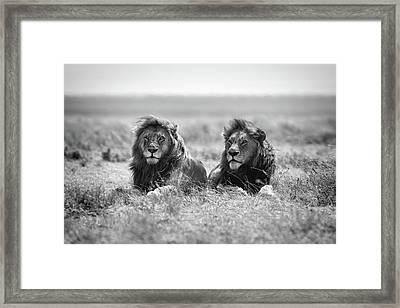 Two Kings Framed Print