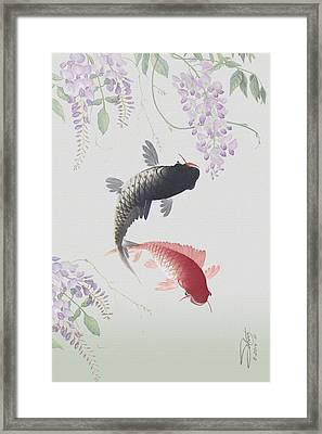 Two Koi And Wisteria Blossoms Framed Print by IM Spadecaller