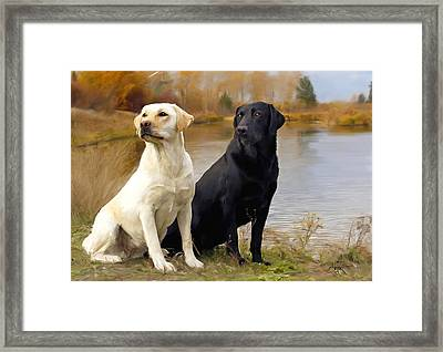 Two Labs Framed Print