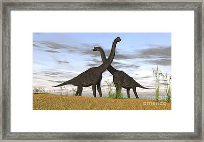 Two Large Brachiosaurus In Prehistoric Framed Print