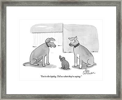 Two Large Dogs Confront A Smaller Dog Framed Print
