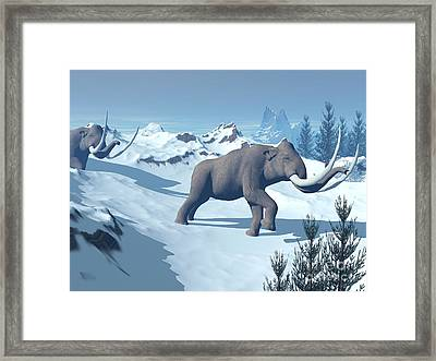 Two Large Mammoths Walking Slowly Framed Print by Elena Duvernay