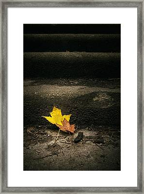 Two Leaves On A Staircase Framed Print