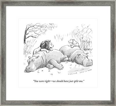 Two Lions Prepare To Dine On Two Hippopotami Framed Print