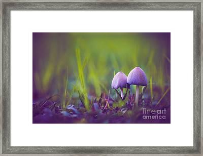 Two Little Elves Framed Print by Alex Greenshpun
