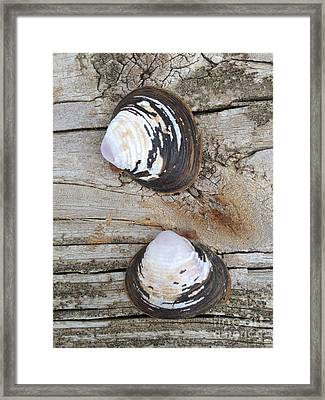 Two Framed Print by M West