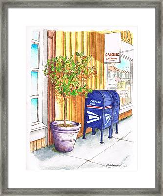 Two Mail Boxes And A Tree In-santa Monica - California Framed Print by Carlos G Groppa
