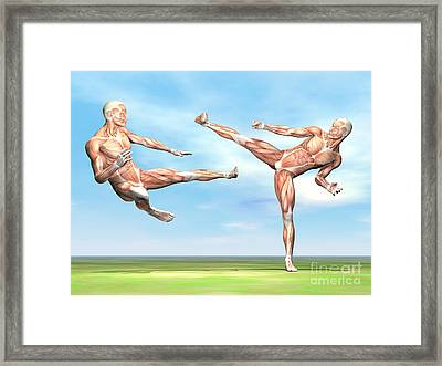 Two Male Musculatures Fighting Martial Framed Print by Elena Duvernay