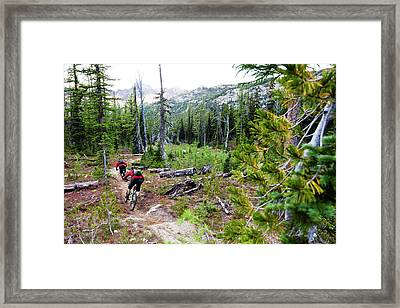 Two Mountain Bikers On Sparse Forest Framed Print