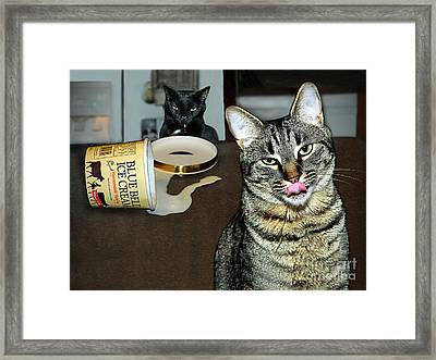 Two Naughty Cats Framed Print