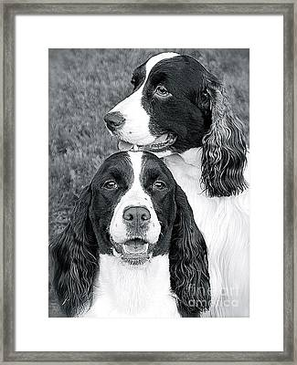 Framed Print featuring the photograph Two Of A Kind by Barbara Dudley