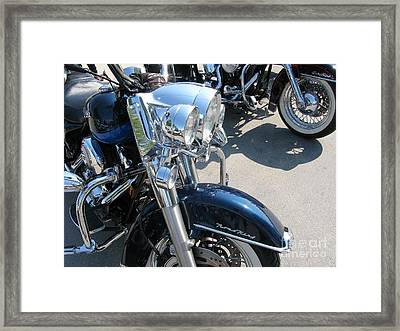 Two Of A Kind Framed Print by Michael Swanson