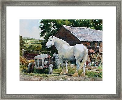 Two Old Grays Framed Print by Anthony Forster