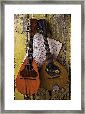 Two Old Mandolins Framed Print by Garry Gay