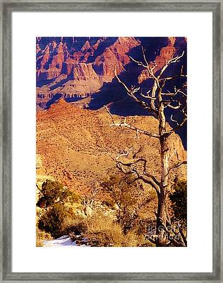Two One Hundred Eighty Three Framed Print by Debbie L Foreman