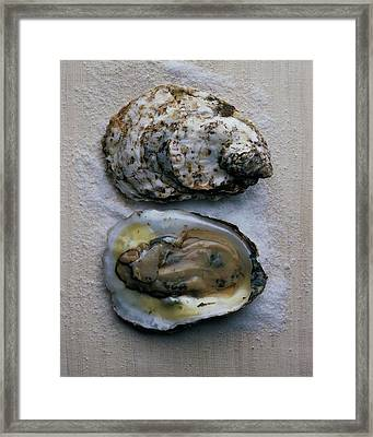 Two Oysters Framed Print by Romulo Yanes