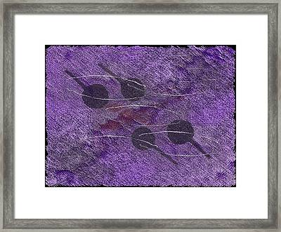Two Pair Framed Print by Tim Allen