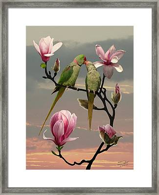 Two Parrots In Magnolia Tree Framed Print
