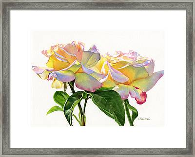 Two Peace Roses Framed Print by Sharon Freeman