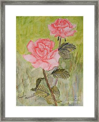 Two Pink Roses Framed Print by Pamela  Meredith