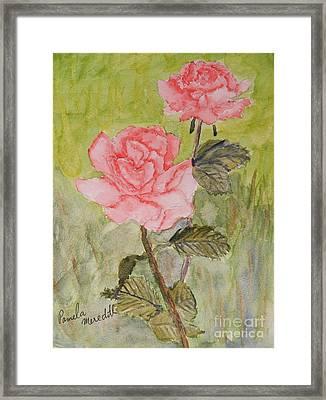 Two Pink Roses Framed Print