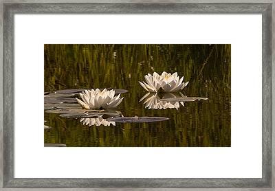 Two Framed Print by Randolph Fritz