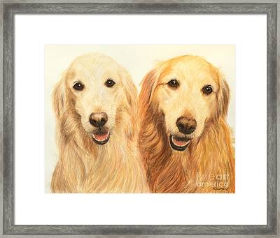 Two Retrievers Painted Framed Print