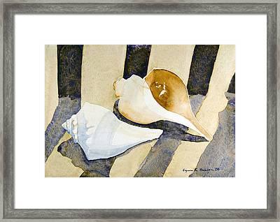 Two Shells Framed Print