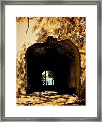 Two Sides Framed Print by Will Cardoso
