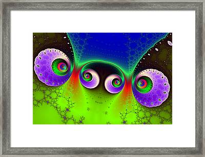 Two Spirals And A Glynn Framed Print