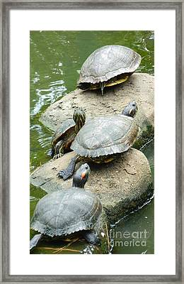 Two Stones Framed Print by Jose Benavides