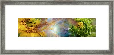 Two Sunflowers With Gaseous Nebula Framed Print by Panoramic Images