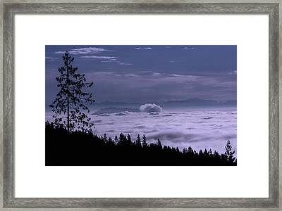 Two Taller Trees Framed Print by Paul W Sharpe Aka Wizard of Wonders
