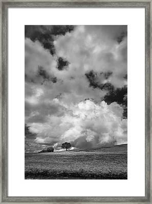 Two To The Left Framed Print by Jon Glaser