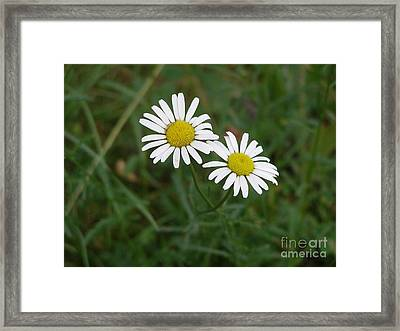 Two To The Sun Framed Print