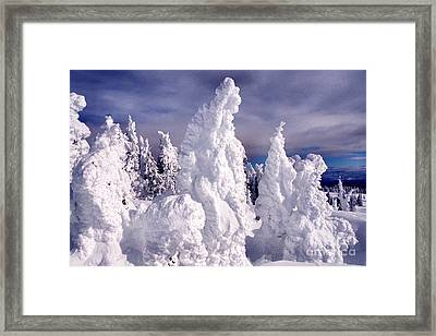 Two Top Mountain Loop Trail Framed Print by Thomas R Fletcher