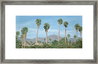 Two Tree's From Ventura State Park Framed Print by Tina Obrien