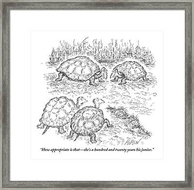 Two Turtles Look On As A Male And Female Turtle Framed Print