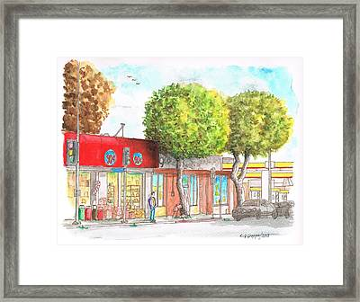Two Tween Trees In Santa Monica Blvd - Santa Monica - Ca Framed Print by Carlos G Groppa