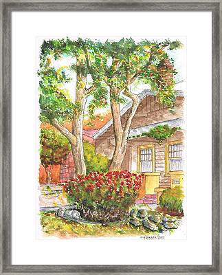 Two Twisted Trunks In Hollywood - California Framed Print