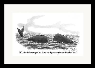 Aquatic Life Drawings Framed Prints