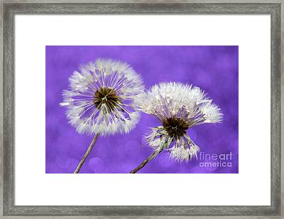 Two Wishes Framed Print by Krissy Katsimbras